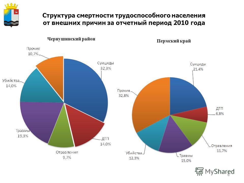 6 Структура смертности трудоспособного населения от внешних причин за отчетный период 2010 года Чернушинский район Пермский край 6