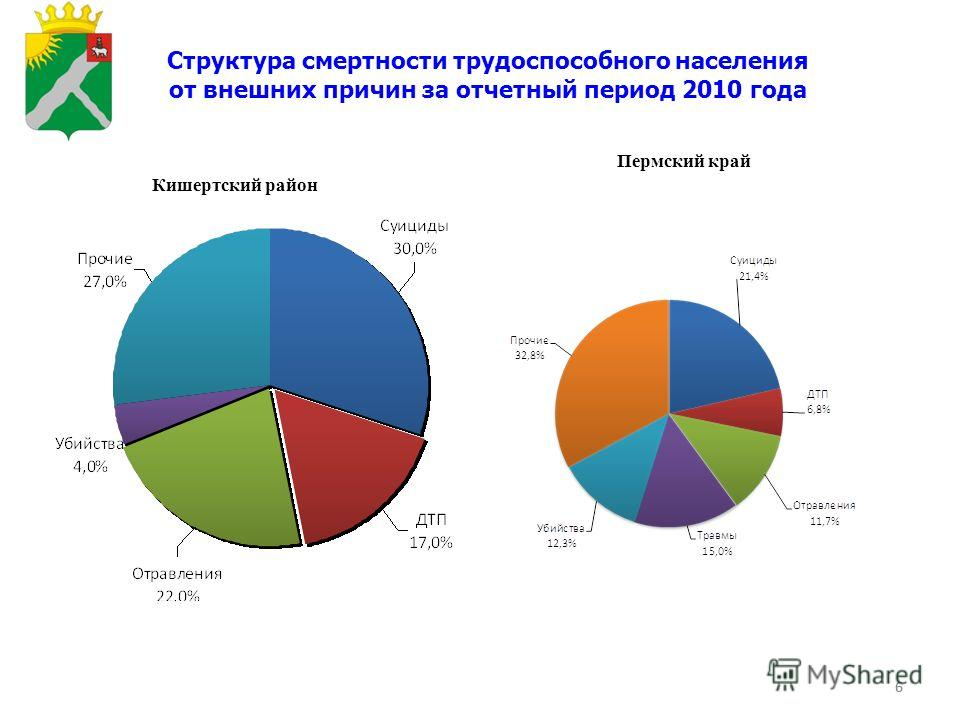 6 Структура смертности трудоспособного населения от внешних причин за отчетный период 2010 года Кишертский район Пермский край 6