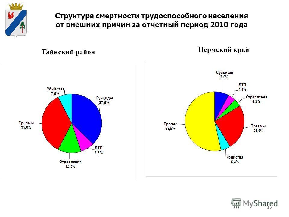 13 Структура смертности трудоспособного населения от внешних причин за отчетный период 2010 года Гайнский район Пермский край 13