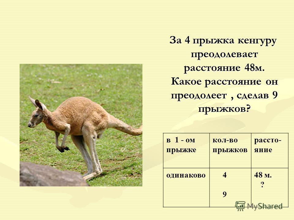 За 4 прыжка кенгуру преодолевает расстояние 48м. Какое расстояние он преодолеет, сделав 9 прыжков? За 4 прыжка кенгуру преодолевает расстояние 48м. Какое расстояние он преодолеет, сделав 9 прыжков? в 1 - ом прыжке кол-во прыжков рассто- яние одинаков