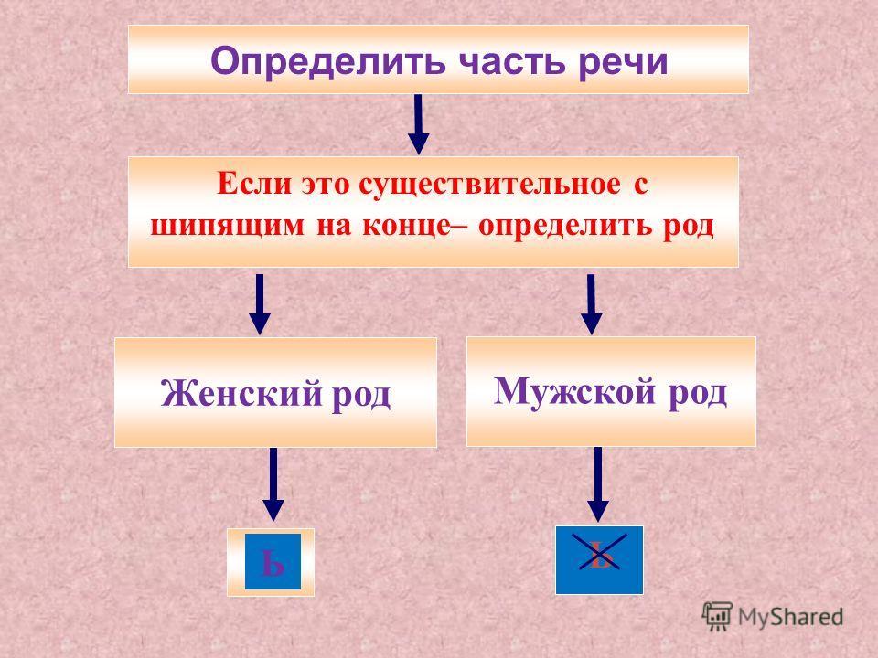 Определить часть речи Женский род Мужской род Ь Ь Если это существительное с шипящим на конце– определить род
