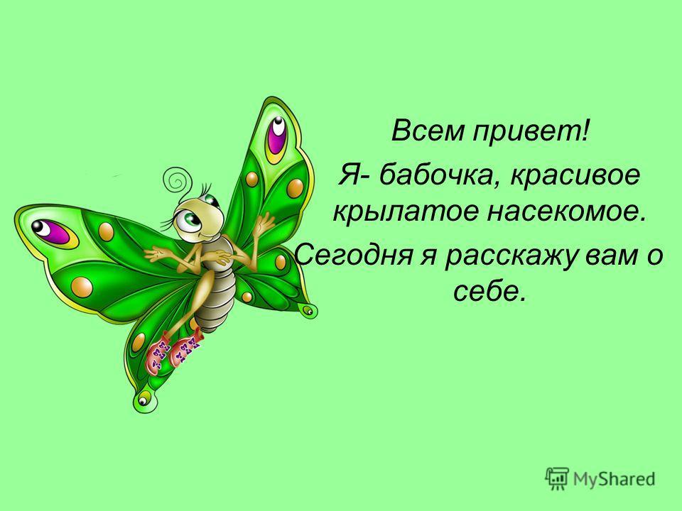 Всем привет! Я- бабочка, красивое крылатое насекомое. Сегодня я расскажу вам о себе.