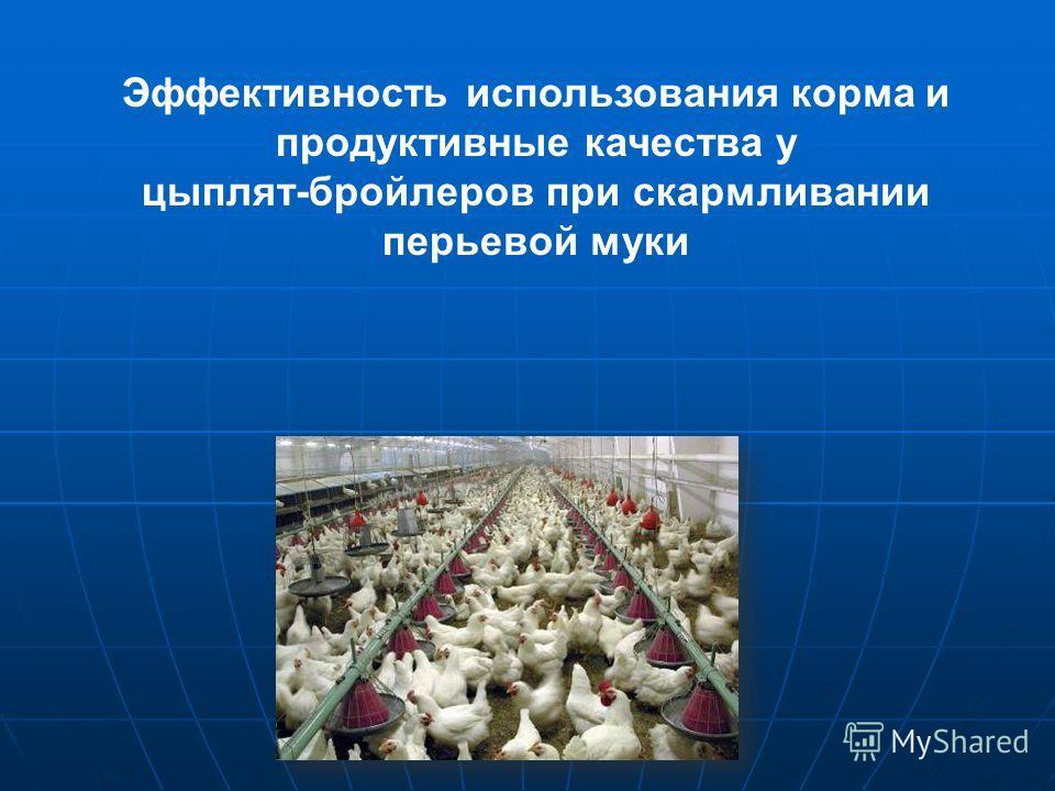 Эффективность использования корма и продуктивные качества у цыплят-бройлеров при скармливании перьевой муки