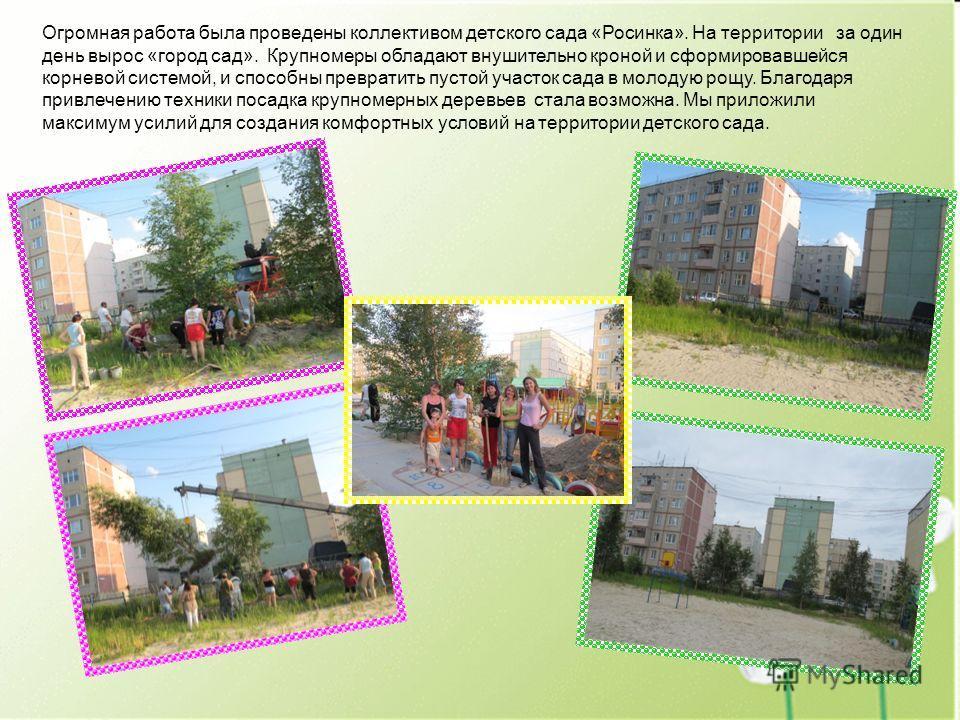 Огромная работа была проведены коллективом детского сада «Росинка». На территории за один день вырос «город сад». Крупномеры обладают внушительно кроной и сформировавшейся корневой системой, и способны превратить пустой участок сада в молодую рощу. Б