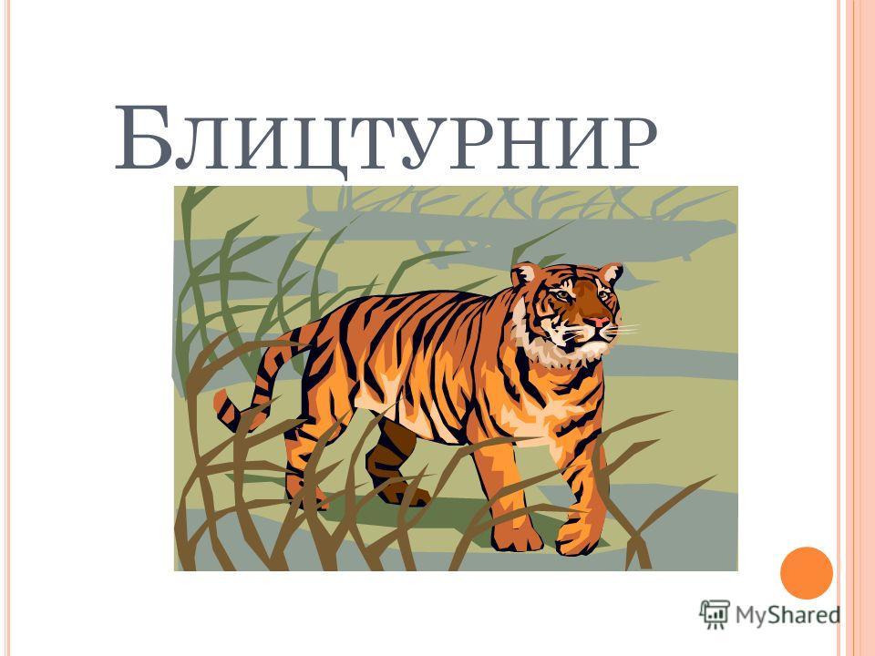 Б ЛИЦТУРНИР