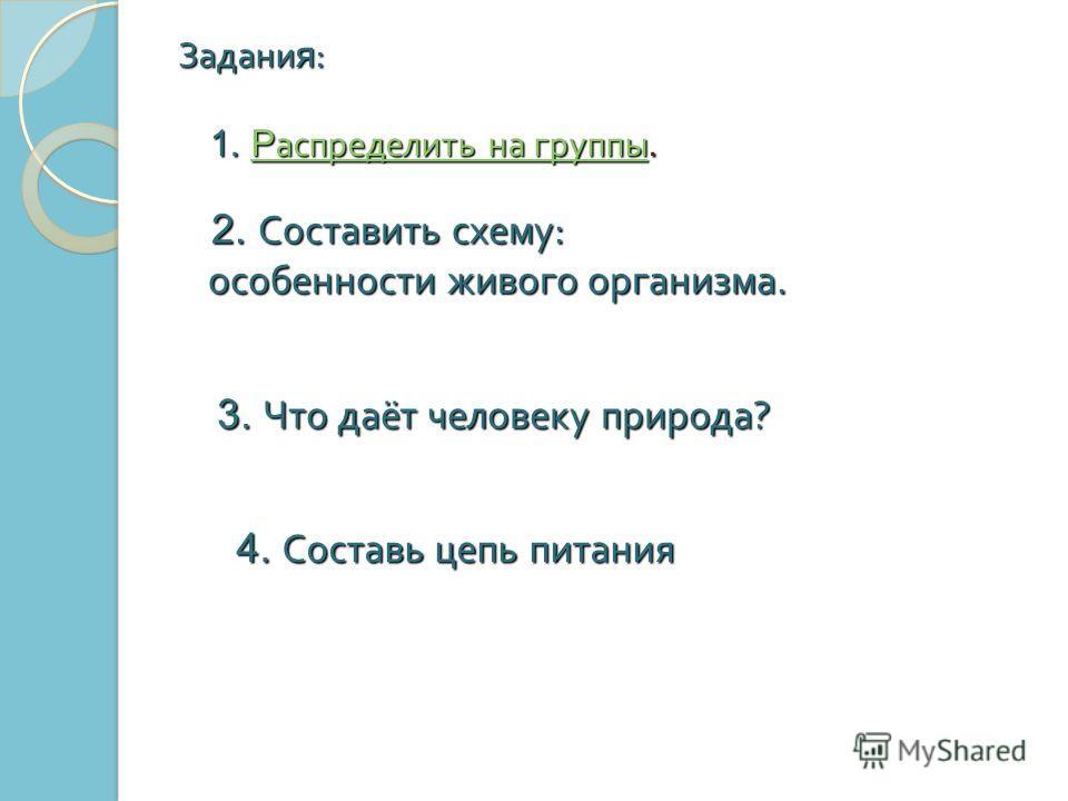 4. Составь цепь питания