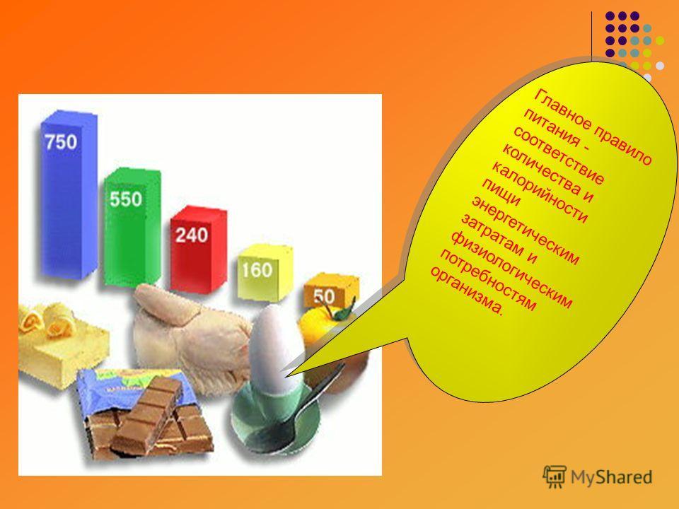 Главное правило питания - соответствие количества и калорийности пищи энергетическим затратам и физиологическим потребностям организма.