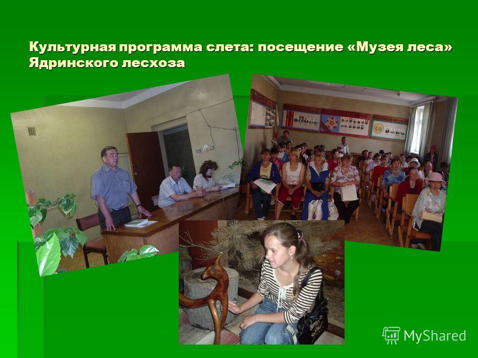 Культурная программа слета: посещение «Музея леса» Ядринского лесхоза