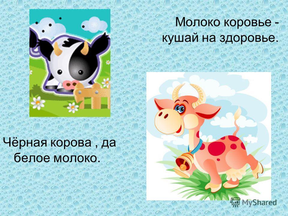 Молоко коровье - кушай на здоровье. Чёрная корова, да белое молоко.