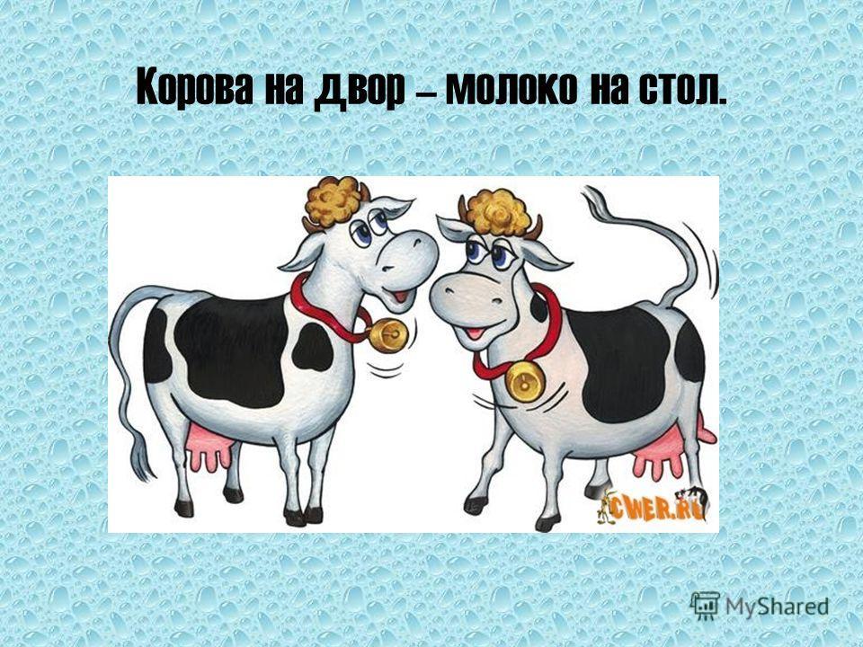 Корова на двор – молоко на стол.