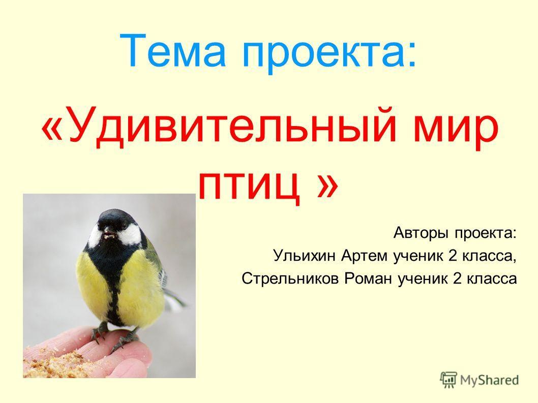 Тема проекта: «Удивительный мир птиц » Авторы проекта: Ульихин Артем ученик 2 класса, Стрельников Роман ученик 2 класса