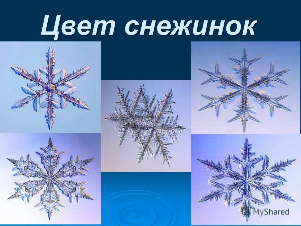 Разнообразие и Разнообразие и формы снежинок формы снежинок