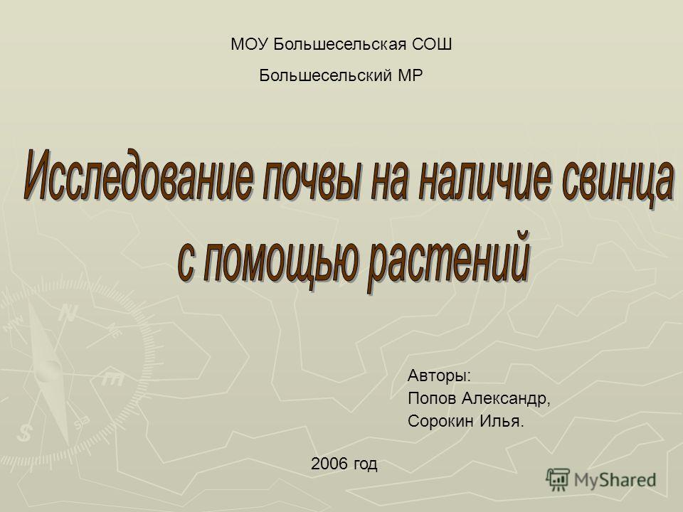 МОУ Большесельская СОШ Большесельский МР 2006 год Авторы: Попов Александр, Сорокин Илья.