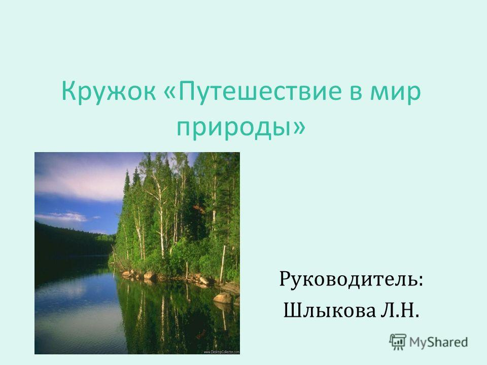 Кружок «Путешествие в мир природы» Руководитель: Шлыкова Л.Н.