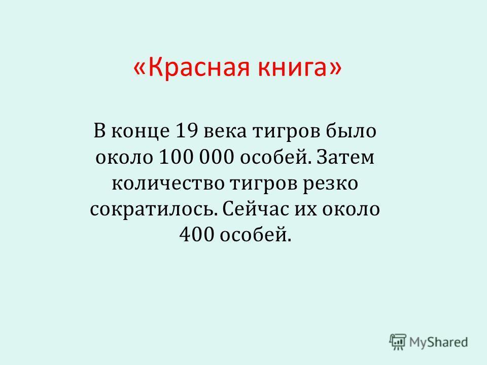 «Красная книга» В конце 19 века тигров было около 100 000 особей. Затем количество тигров резко сократилось. Сейчас их около 400 особей.