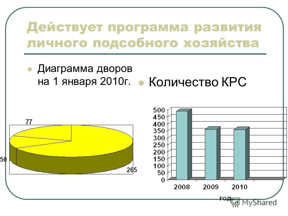 Действует программа развития личного подсобного хозяйства Диаграмма дворов на 1 января 2010г. Количество КРС