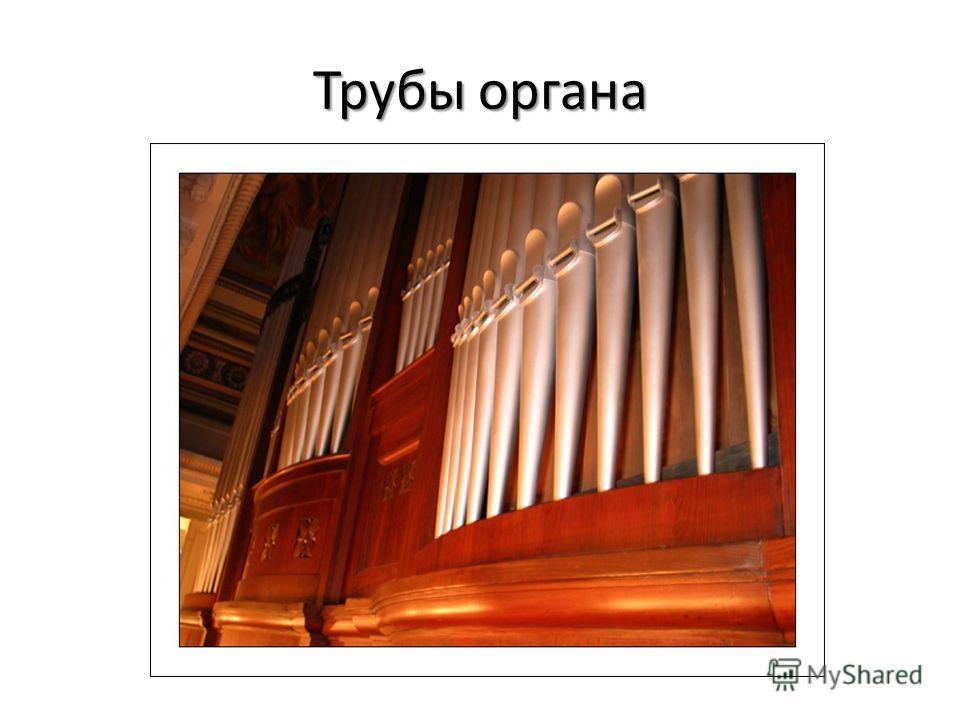 Трубы органа