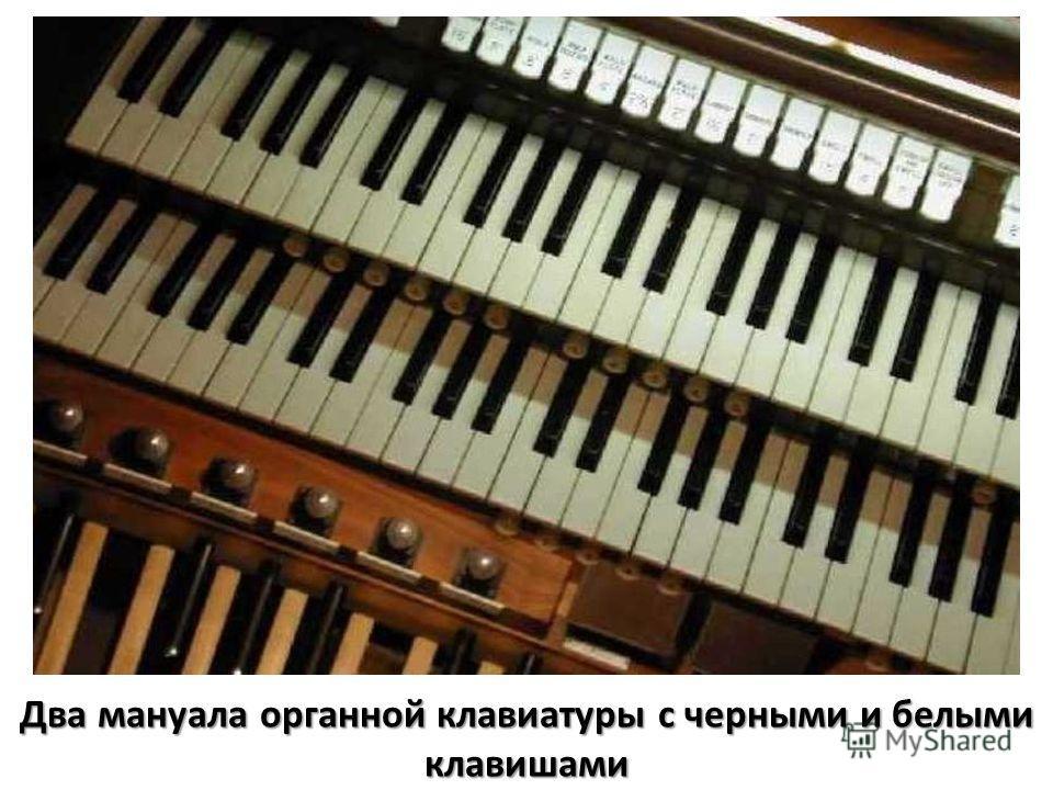 Два мануала органной клавиатуры с черными и белыми клавишами
