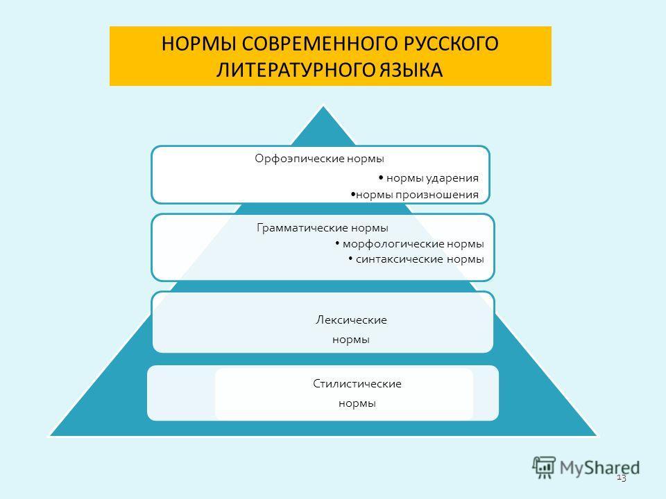 Орфоэпические нормы нормы ударения нормы произношения Лексические нормы Грамматические нормы морфологические нормы синтаксические нормы НОРМЫ СОВРЕМЕННОГО РУССКОГО ЛИТЕРАТУРНОГО ЯЗЫКА Стилистические нормы 13