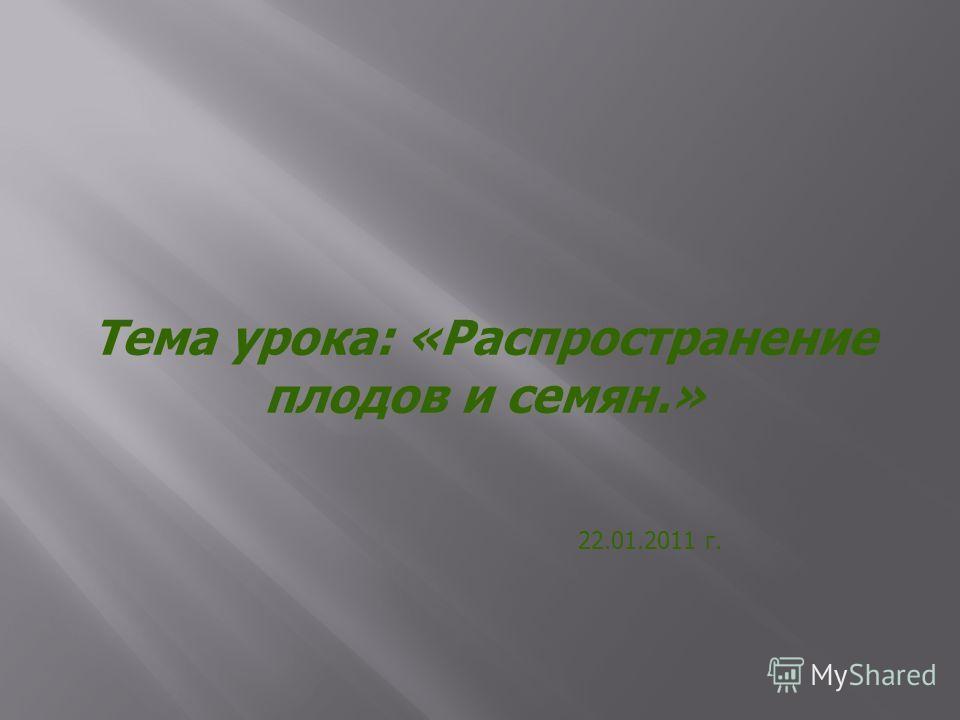 Тема урока: «Распространение плодов и семян.» 22.01.2011 г.