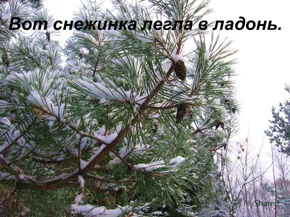 Светланы Савицкой