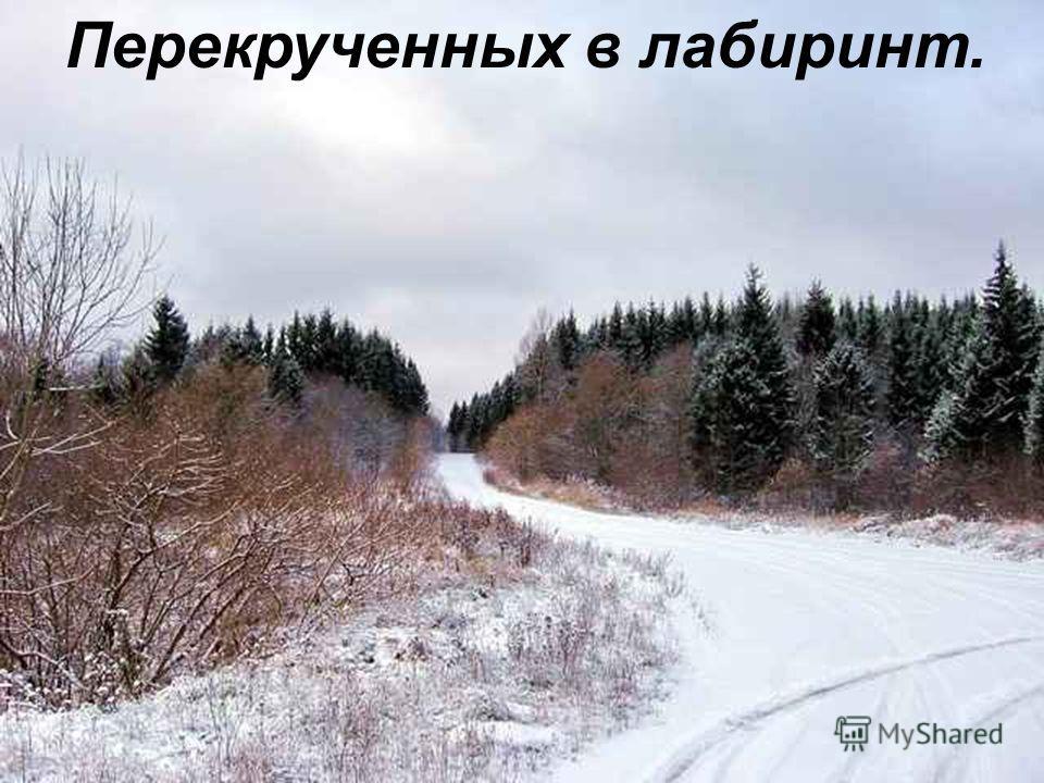 В ней так много прошедших зим,