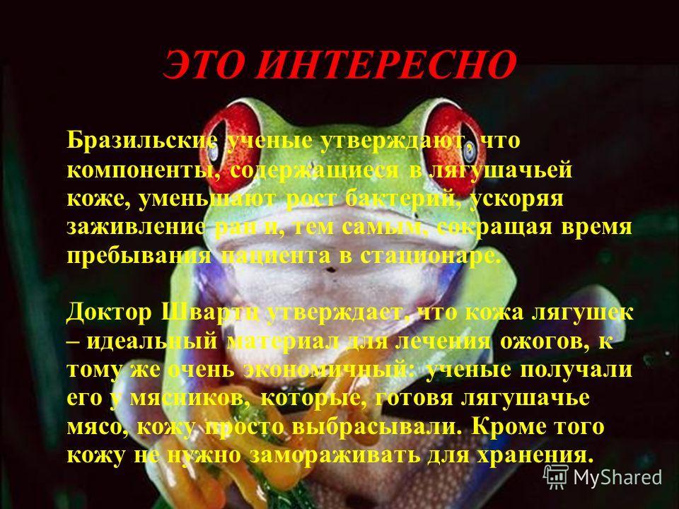 Эти памятники представлены по всему миру: Бостон, Петербург, Москва, Казань, Париж, Токио, Киев…Это значит что лягушки и жабы имеют большое значение для людей! Их надо беречь и охранять!