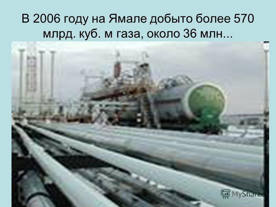 В 2006 году на Ямале добыто более 570 млрд. куб. м газа, около 36 млн...