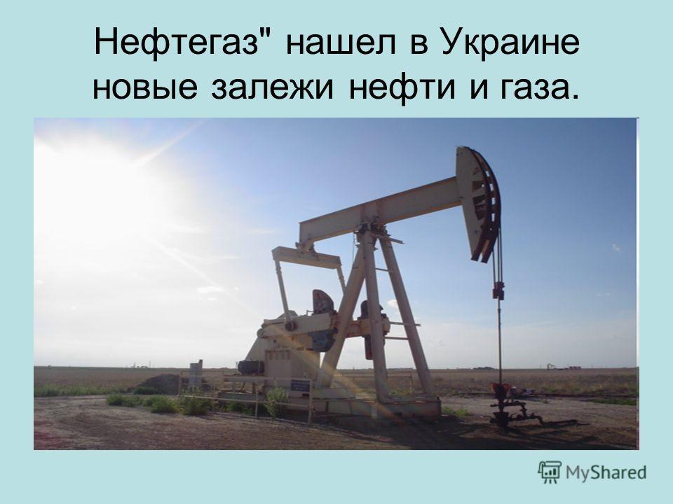 Нефтегаз нашел в Украине новые залежи нефти и газа.