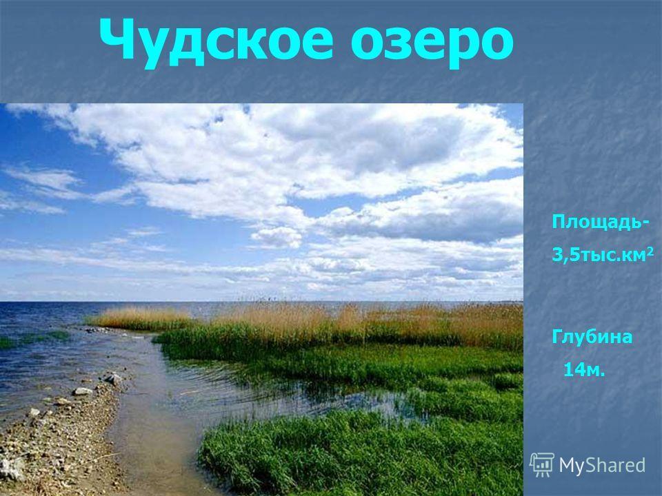 Чудское озеро Площадь- 3,5тыс.км 2 Глубина 14м.