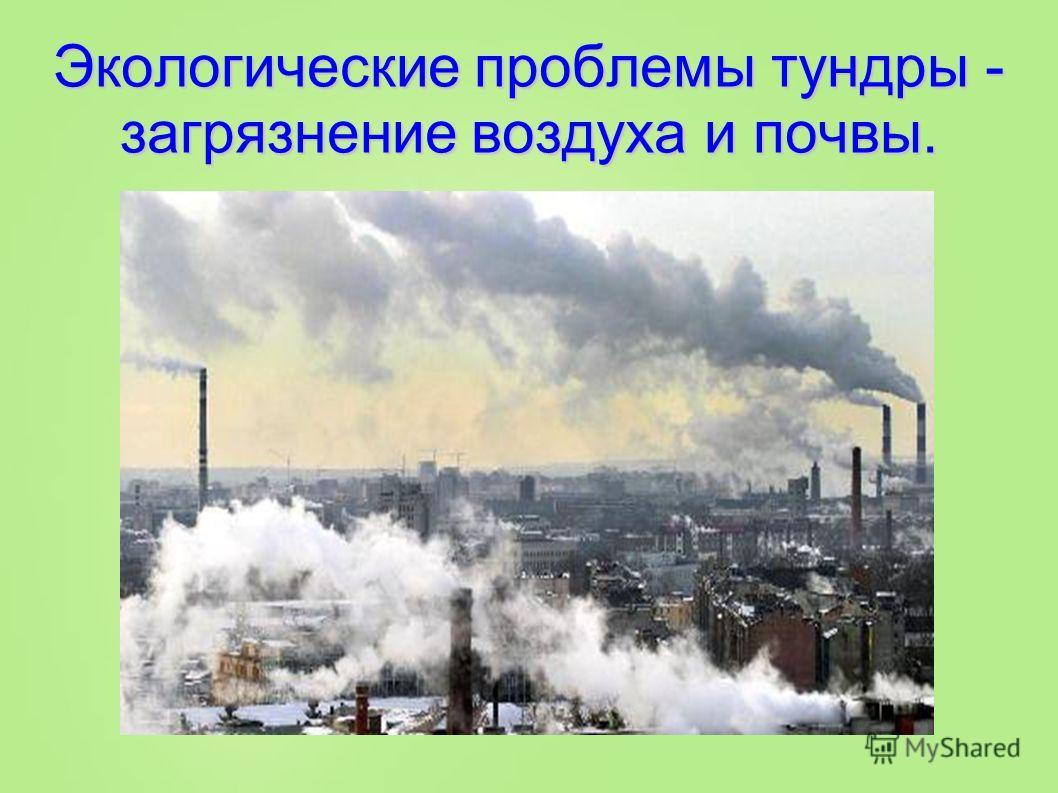 Экологические проблемы тундры - загрязнение воздуха и почвы.