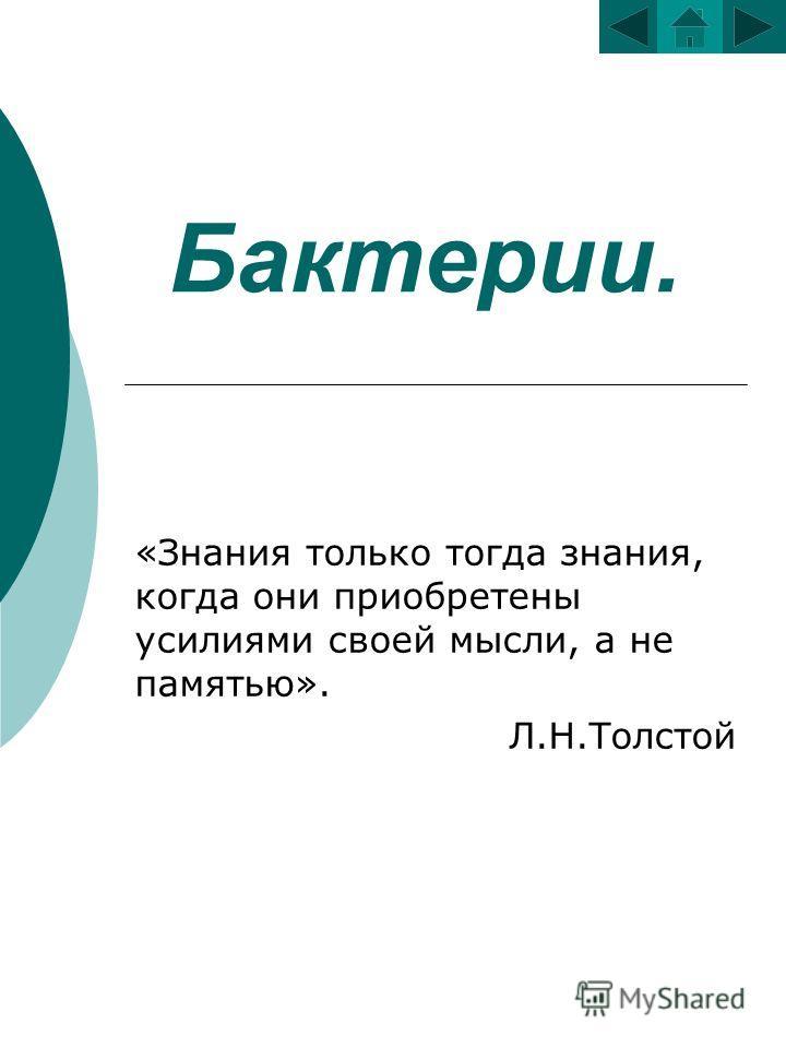 Бактерии. «Знания только тогда знания, когда они приобретены усилиями своей мысли, а не памятью». Л.Н.Толстой