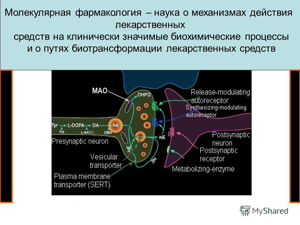 Молекулярная фармакология – наука о механизмах действия лекарственных средств на клинически значимые биохимические процессы и о путях биотрансформации лекарственных средств