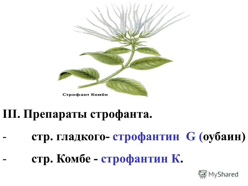 III. Препараты строфанта. - стр. гладкого- строфантин G (оубаин) - стр. Комбе - строфантин К.