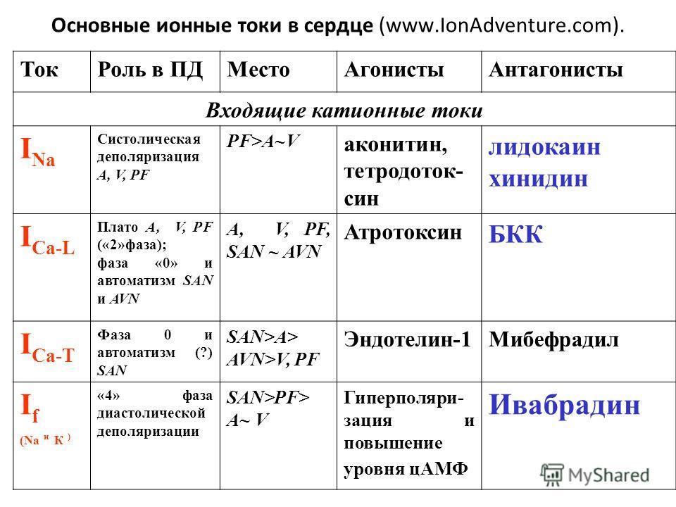 Основные ионные токи в сердце (www.IonAdventure.com). ТокРоль в ПДМестоАгонистыАнтагонисты Входящие катионные токи I Na Систолическая деполяризация A, V, PF PF>A~V аконитин, тетродоток- син лидокаин хинидин I Ca-L Плато A, V, PF («2»фаза); фаза «0» и