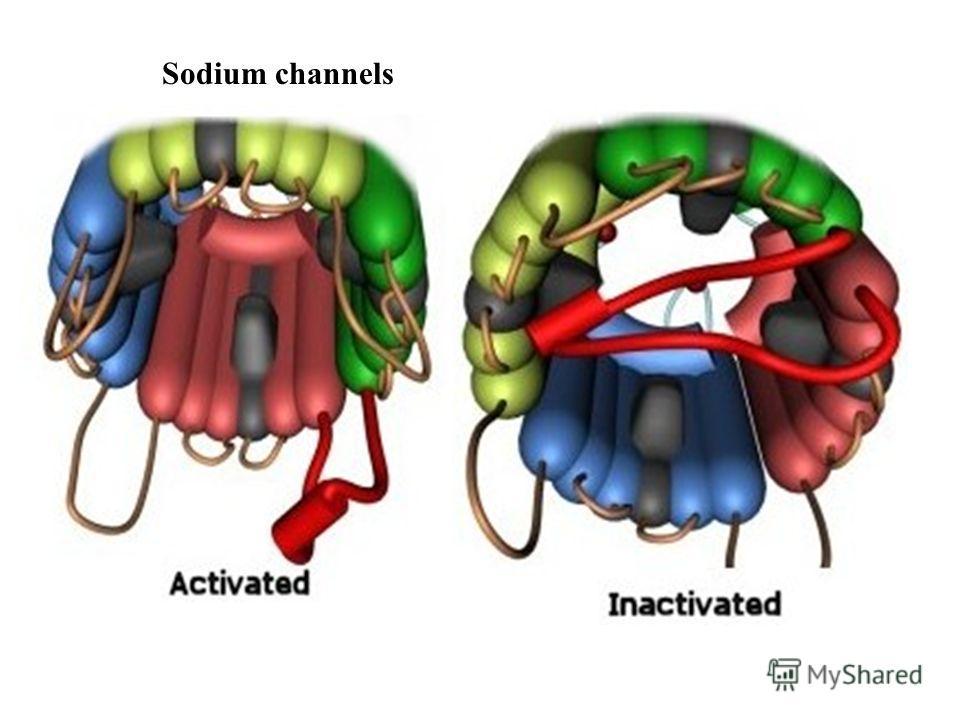 Sodium channels