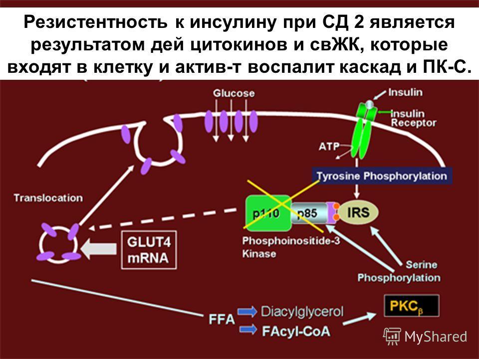 Резистентность к инсулину при СД 2 является результатом дей цитокинов и свЖК, которые входят в клетку и актив-т воспалит каскад и ПК-С.