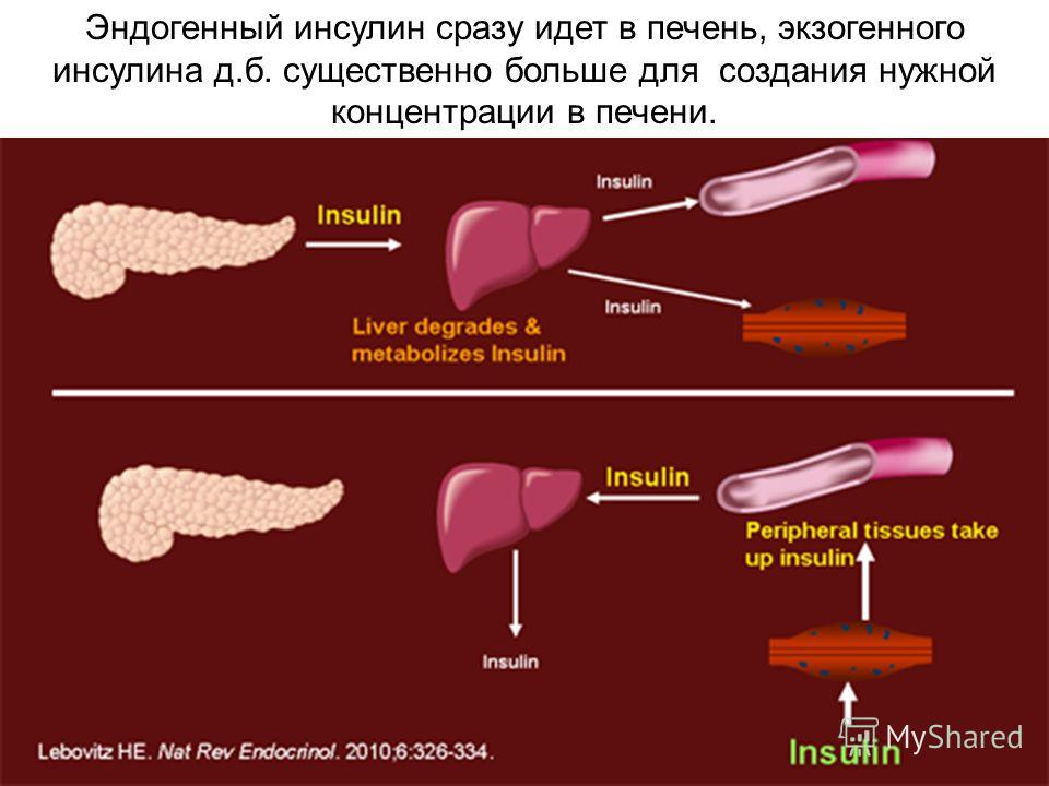 Как и чем вылечить гепатит б хронический