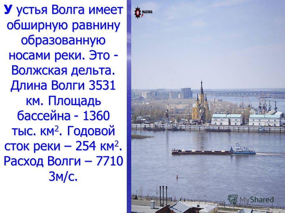 У устья Волга имеет обширную равнину образованную носами реки. Это - Волжская дельта. Длина Волги 3531 км. Площадь бассейна - 1360 тыс. км 2. Годовой сток реки – 254 км 2. Расход Волги – 7710 3м/c.