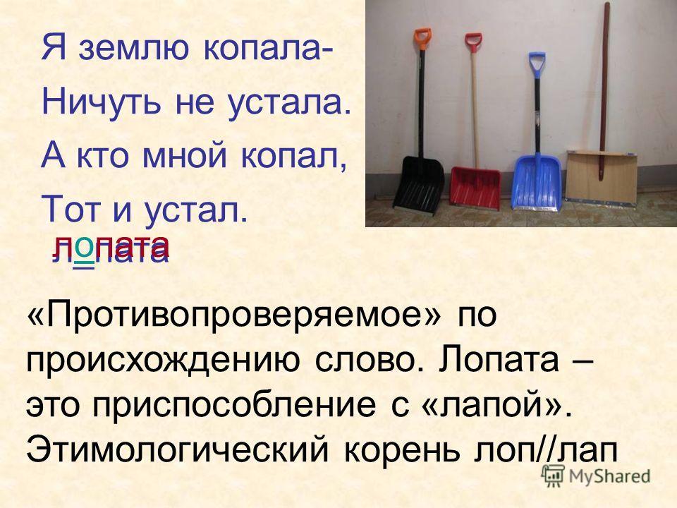 Я землю копала- Ничуть не устала. А кто мной копал, Тот и устал. л_пата лопата «Противопроверяемое» по происхождению слово. Лопата – это приспособление с «лапой». Этимологический корень лоп//лап