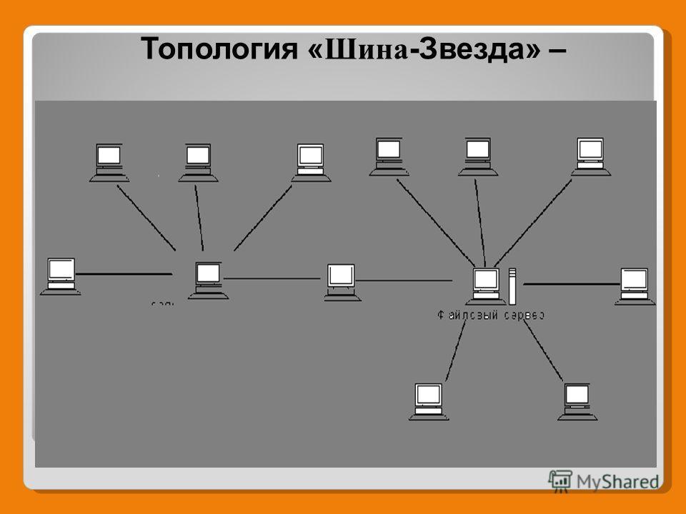 Топология « Шина -Звезда» –