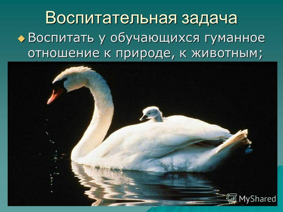 Воспитательная задача Воспитать у обучающихся гуманное отношение к природе, к животным; Воспитать у обучающихся гуманное отношение к природе, к животным;