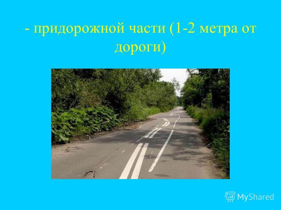 - придорожной части (1-2 метра от дороги)