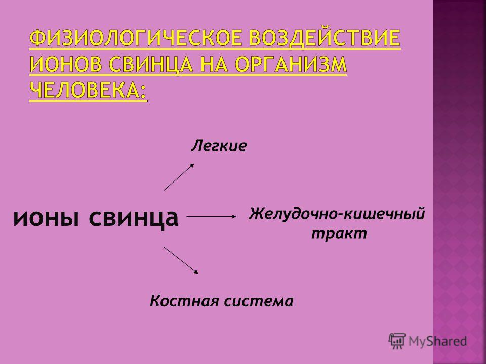 ионы свинца Легкие Желудочно-кишечный тракт Костная система