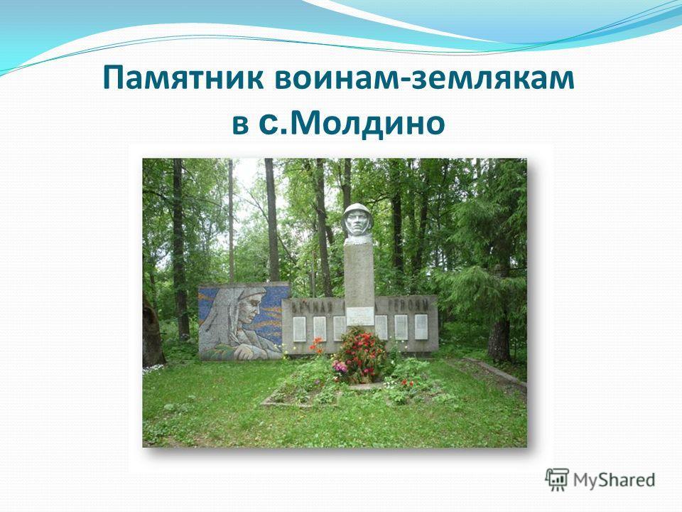 Памятник воинам-землякам в с. Молдино