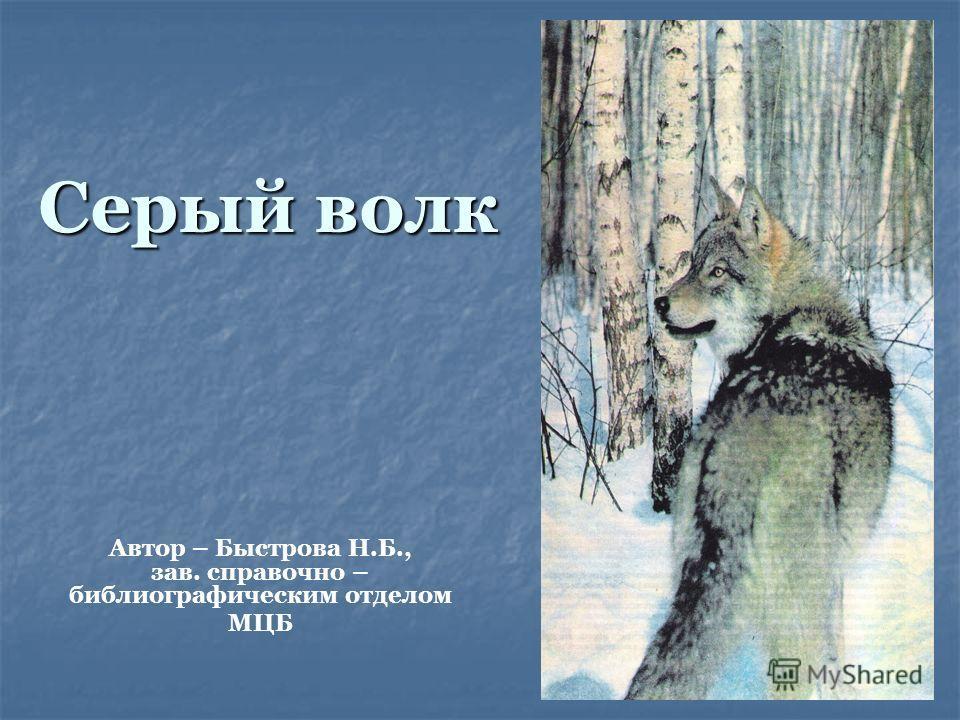 Серый волк Автор – Быстрова Н.Б., зав. справочно – библиографическим отделом МЦБ
