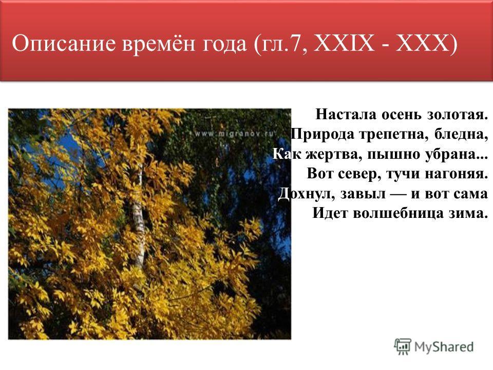 Описание времён года (гл.7, XXIX - XXX) Настала осень золотая. Природа трепетна, бледна, Как жертва, пышно убрана... Вот север, тучи нагоняя. Дохнул, завыл и вот сама Идет волшебница зима.