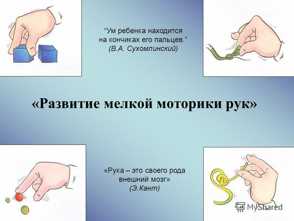 1 «Развитие мелкой моторики рук» Ум ребенка находится на кончиках его пальцев. (В.А. Сухомлинский) «Рука – это своего рода внешний мозг» (Э.Кант)