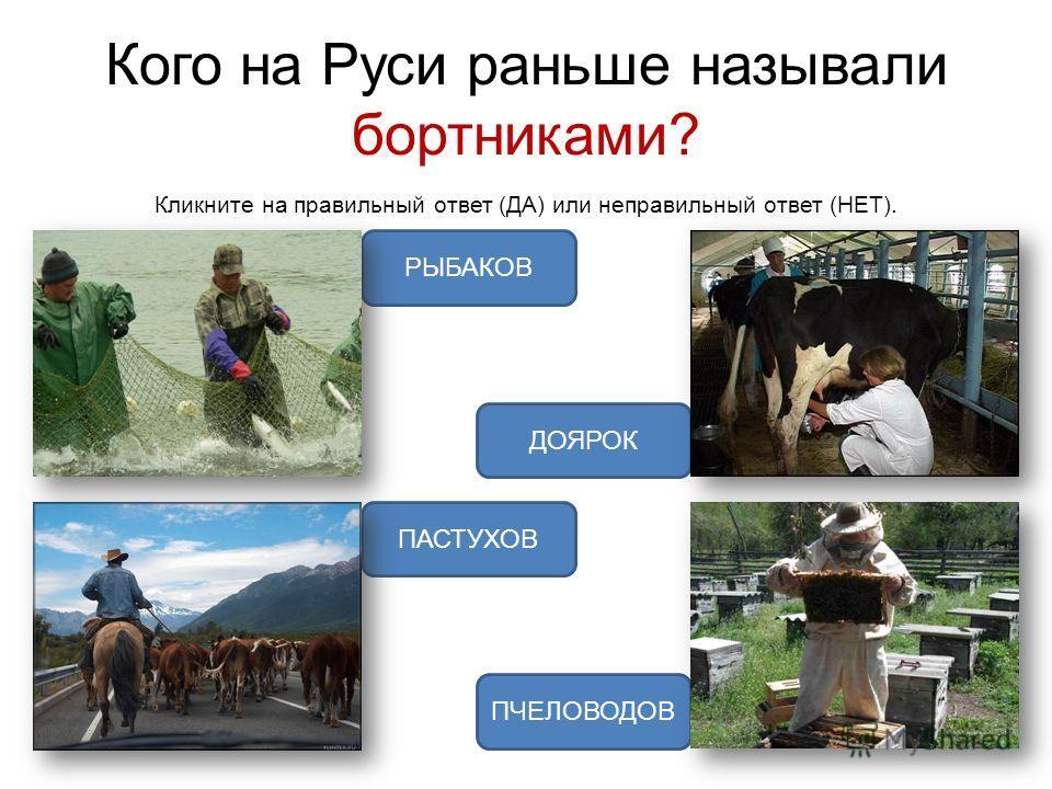 Кого на Руси раньше называли бортниками? Кликните на правильный ответ (ДА) или неправильный ответ (НЕТ). ПЧЕЛОВОДОВ ПАСТУХОВ ДОЯРОК РЫБАКОВ