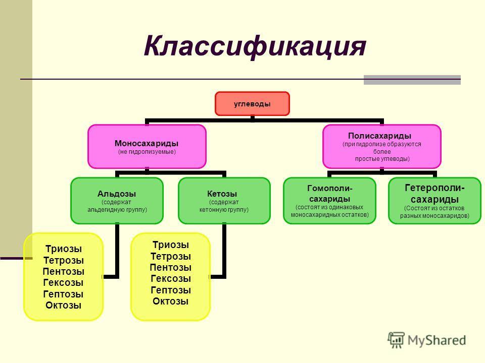Классификация углеводы Моносахариды (не гидролизуемые) Альдозы (содержат альдегидную группу) Триозы Тетрозы Пентозы Гексозы Гептозы Октозы Кетозы (содержат кетонную группу) Триозы Тетрозы Пентозы Гексозы Гептозы Октозы Полисахариды (при гидролизе обр